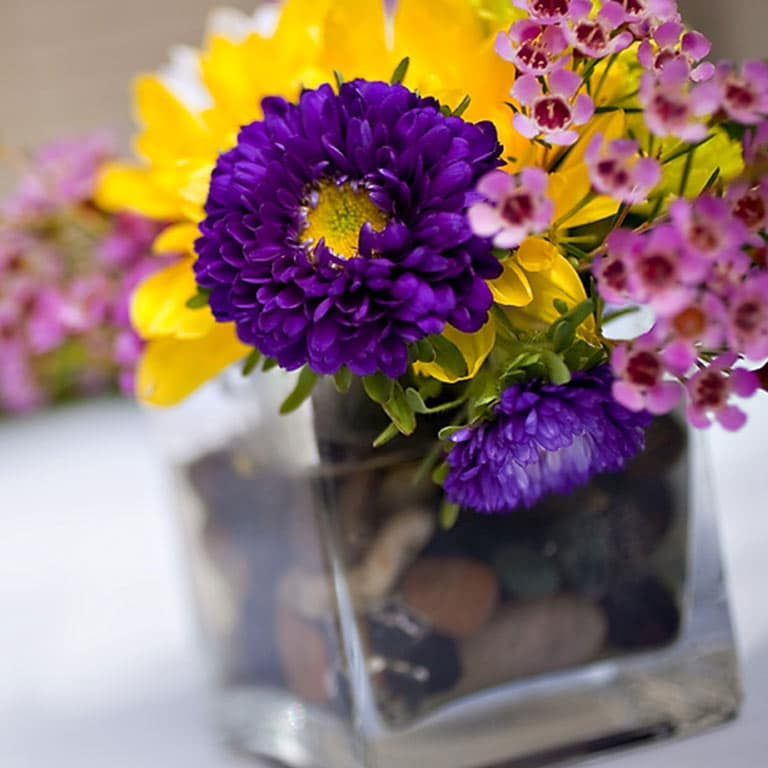 Purple and yellow flowers in a vase
