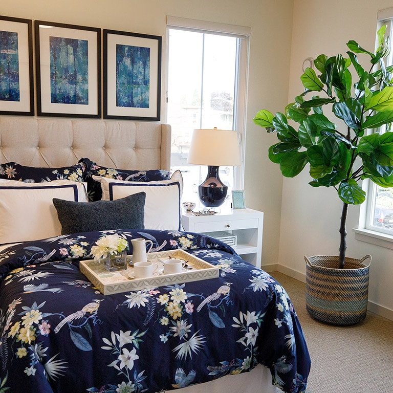 Bedroom with plant and pictures on wall and lamp