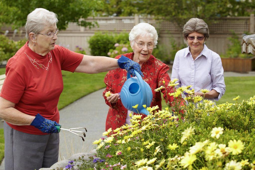 gardening at lynnwood