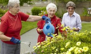 Three Aegis Living of Lynnwood community members tend the flower garden