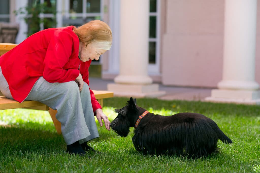 Where to Begin resident with dog